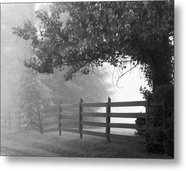 Fog At Dawn Metal Print