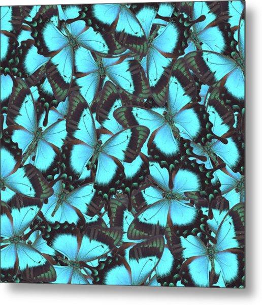 Green Swallowtail Butterfly Metal Print