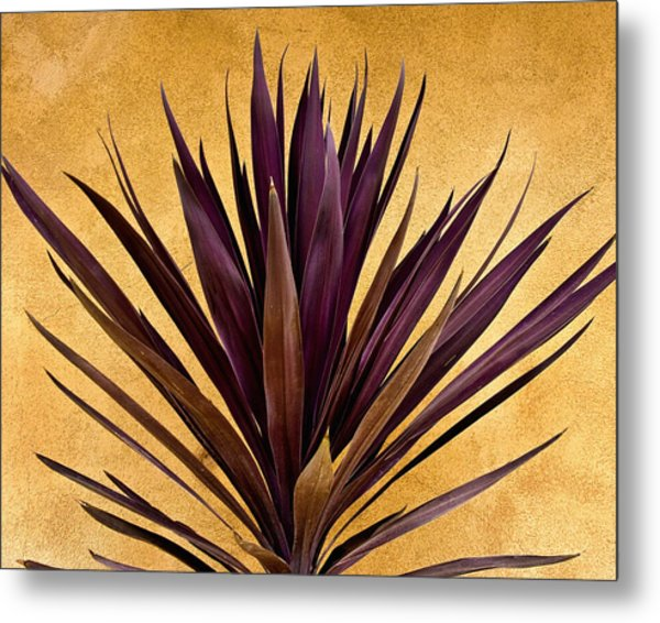 Purple Giant Dracaena Santa Fe Metal Print