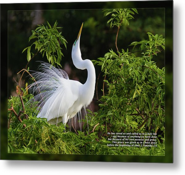 Metal Print featuring the photograph 2 Timothy 1 9 by Dawn Currie