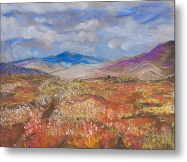 Alaskan Meadow Metal Print