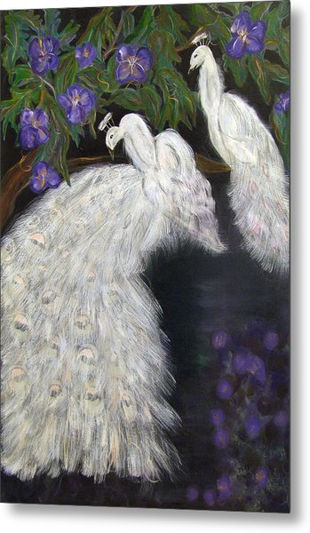 Albino Peacocks Metal Print by Mikki Alhart