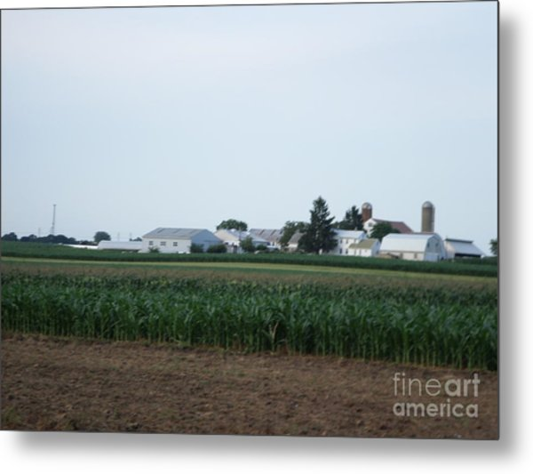 Amish Homestead 9 Metal Print