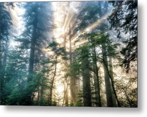 Among The Giants Metal Print
