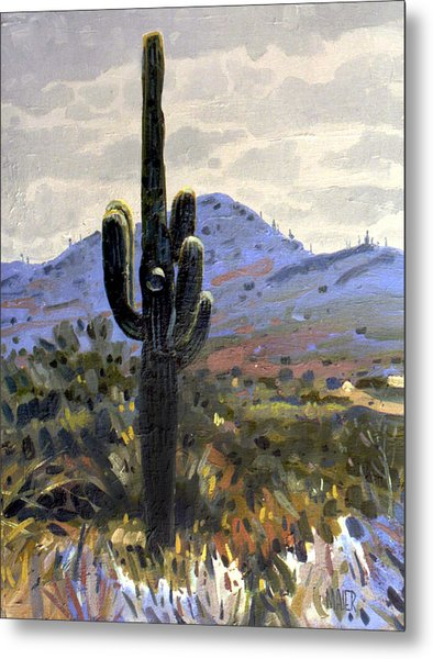 Arizona Icon Metal Print