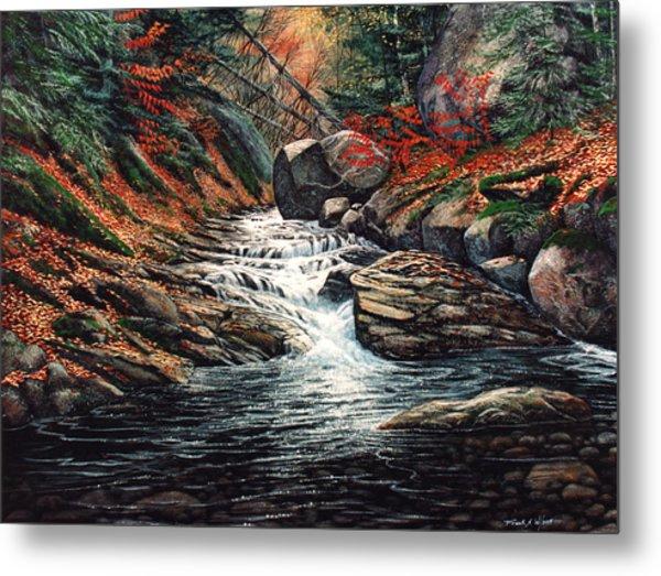 Autumn Brook Metal Print