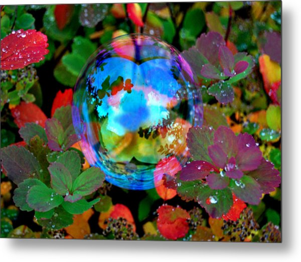 Autumn Bubble Metal Print