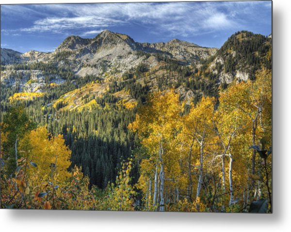 Autumn Colors In The Wasatch Mountains Metal Print