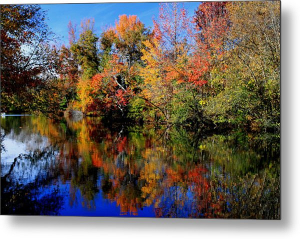 Autumn Pond Metal Print by Gary Bydlo