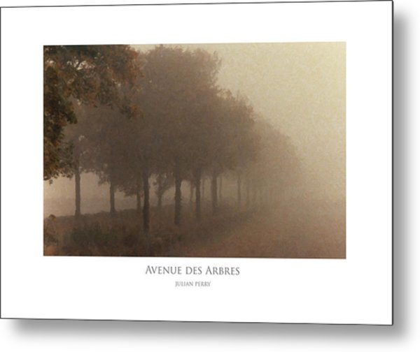 Metal Print featuring the digital art Avenue Des Arbres by Julian Perry