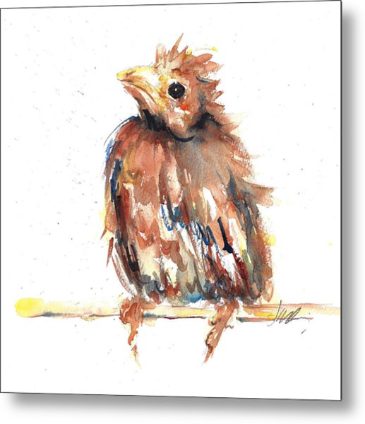 Baby Cardinal - New Beginnings Metal Print