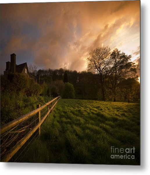 Behind The Fence Metal Print by Angel Ciesniarska