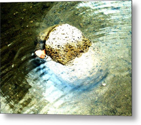 Beside Still Waters Metal Print by Tim Tanis