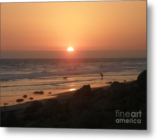 Best Friends At The Beach Metal Print