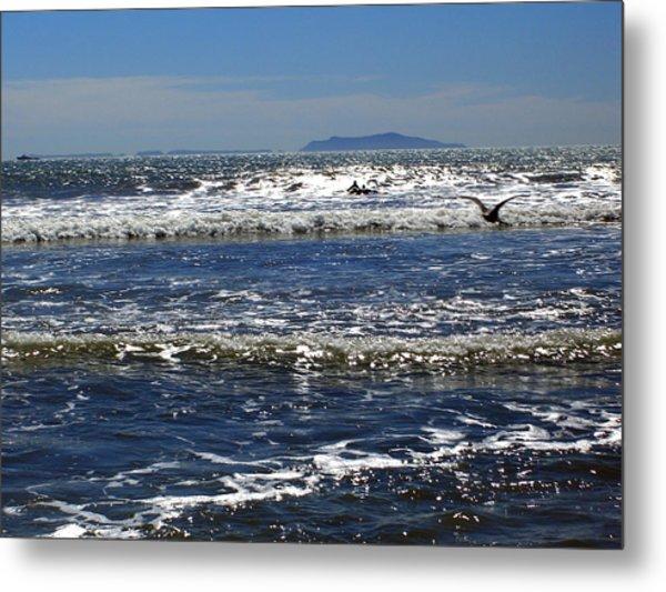 Bird On A Wave  Metal Print by Robin Hernandez