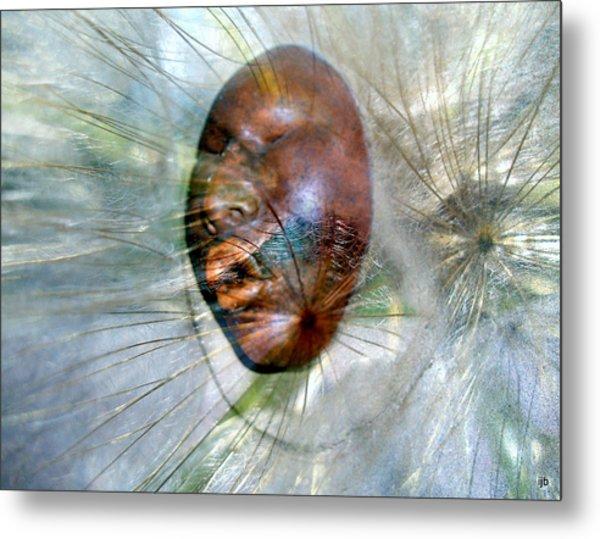 Blowing Dandelions Metal Print