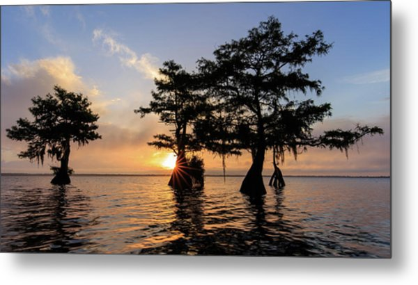 Blue Cypress Lake Morning Metal Print
