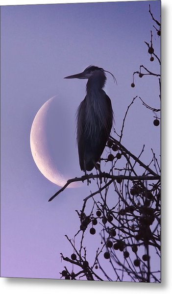 Blue Heron Moon Metal Print