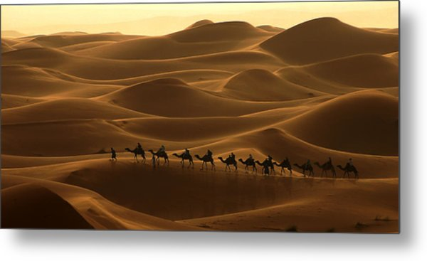 Camel Caravan In The Erg Chebbi Southern Morocco Metal Print