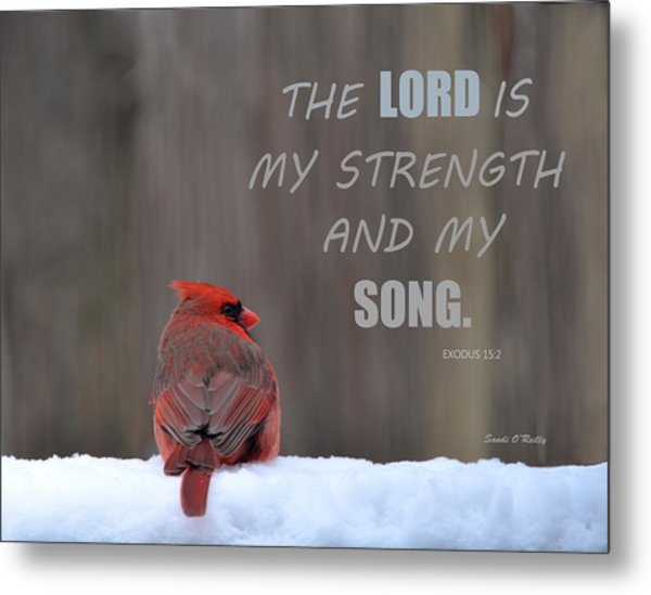 Cardinal In The Snowstorm With Scripture Metal Print