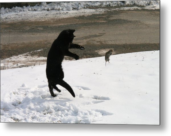 Cat And Mouse Tango Metal Print