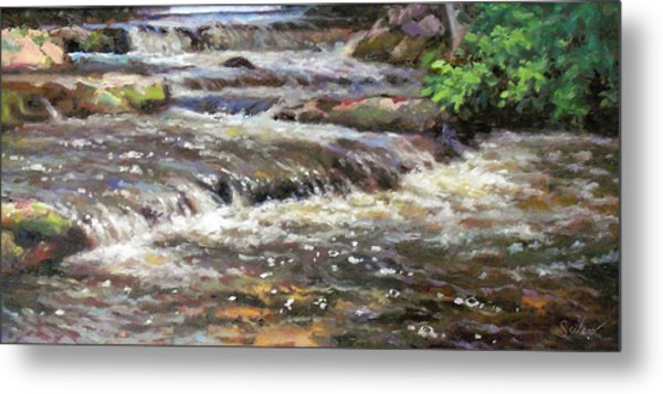 Cedar Creek Metal Print by Larry Seiler