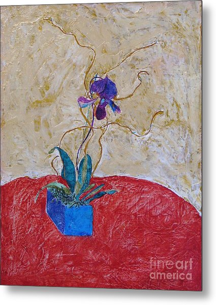 Christmas Orchid Metal Print by James SheppardIII