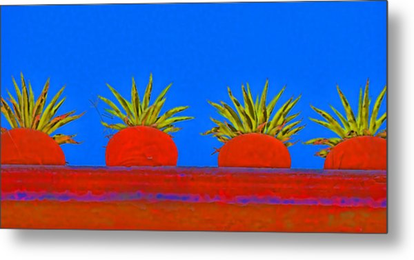 Colorful Potted Plants Mexico Metal Print