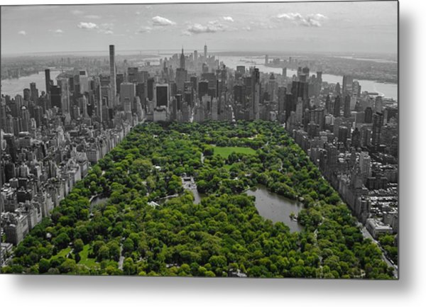 Concrete Jungle Metal Print