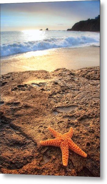 Crescent Bay Laguna Beach California Metal Print