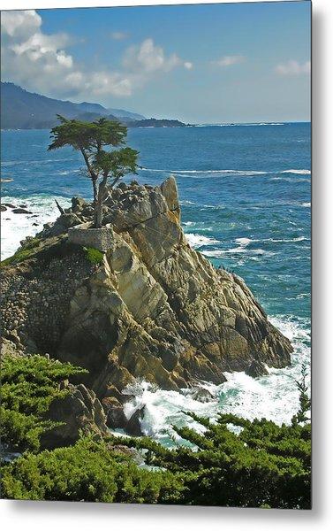 Cypress Point Ll Metal Print