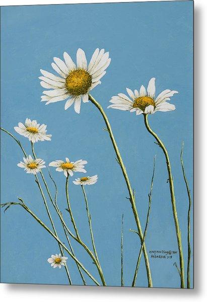 Daisies In The Wind Metal Print