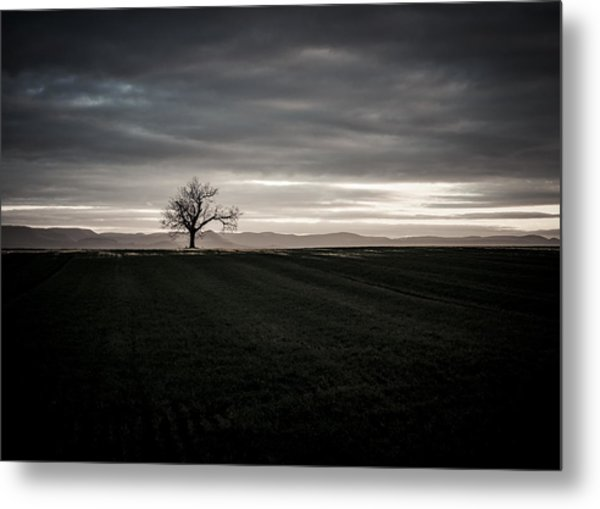 Dark And Light Metal Print