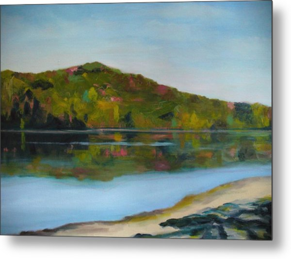 Deer Lake Metal Print by Joe Lanni