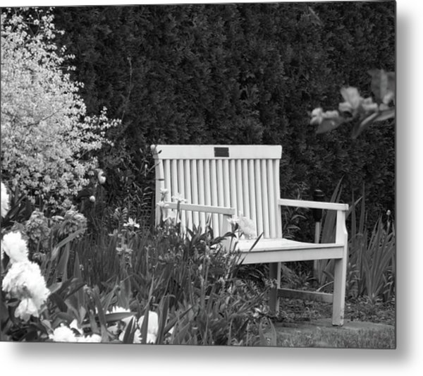 Desolate In The Garden Metal Print
