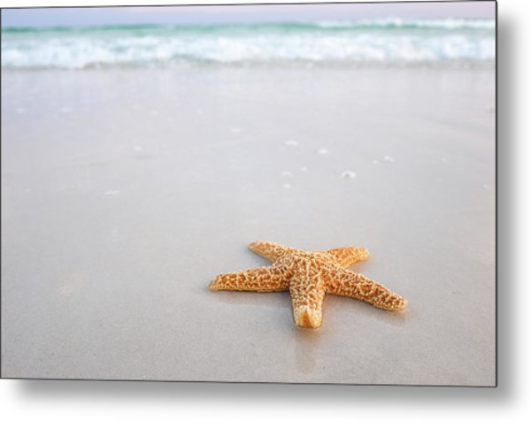Destin Florida Miramar Beach Starfish Metal Print
