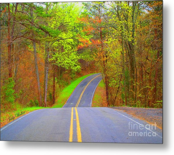 Down A Country Road Metal Print