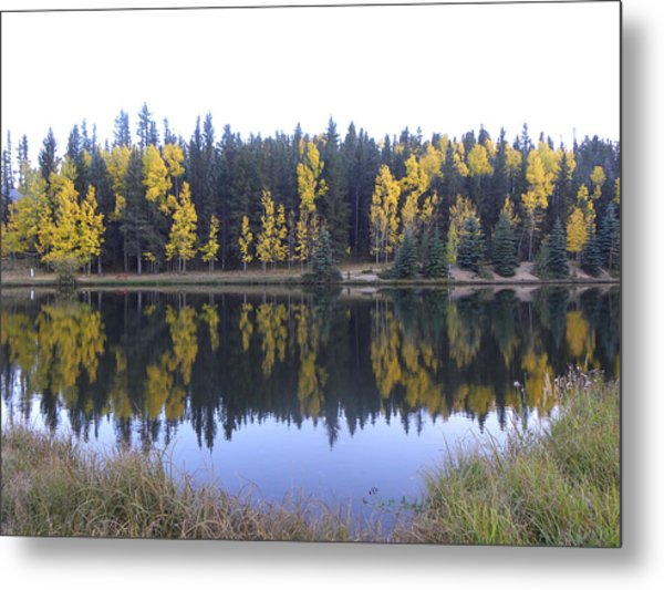 Potty Pond Reflection - Fall Colors Divide Co Metal Print