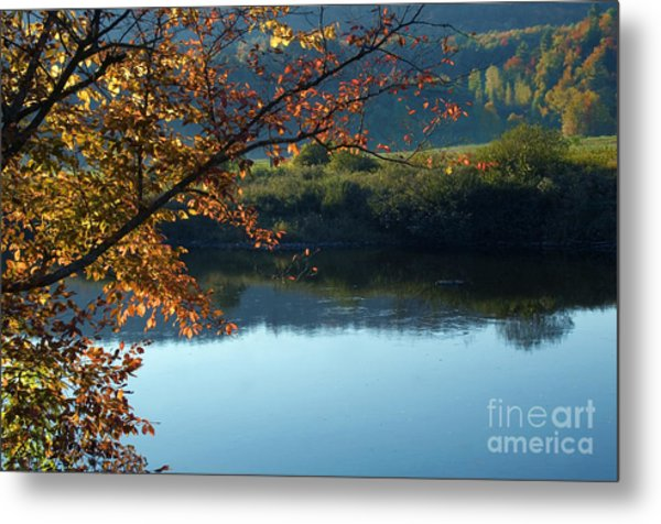 Fall In Vermont Metal Print