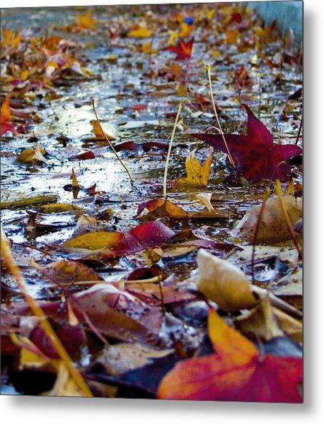 Fall Metal Print by Jason Leonti