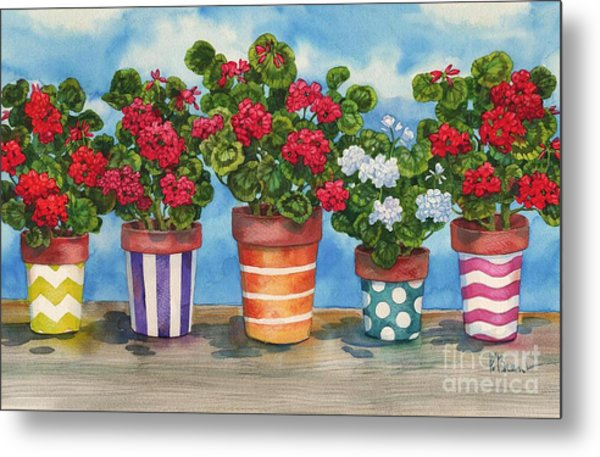 Fancy Pots Geraniums Metal Print by Paul Brent