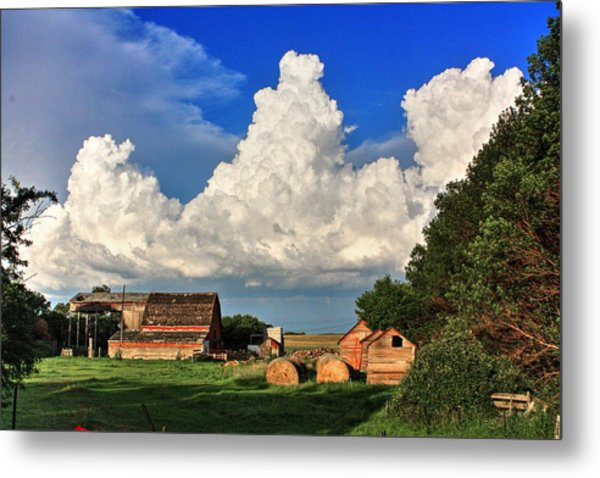 Farm Yard Metal Print
