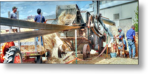 Filling The Sack 3485 Metal Print