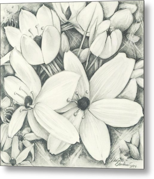 Flowers Pencil Metal Print