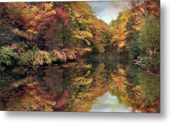 Metal Print featuring the photograph Foliage Reflections by Jessica Jenney
