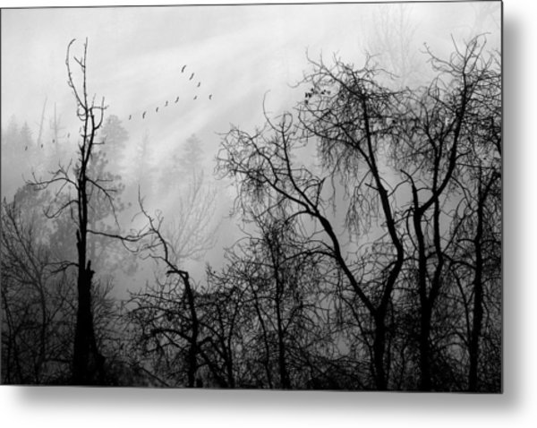 Forever Autumn Metal Print