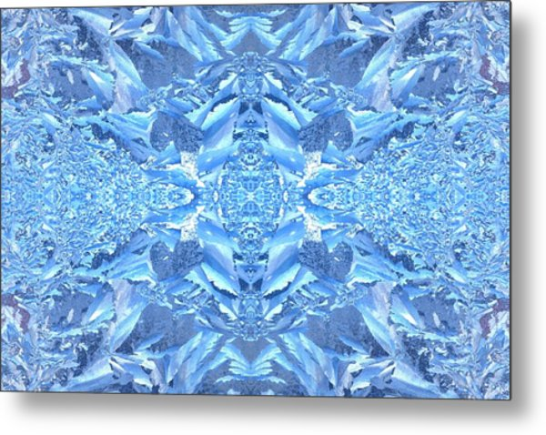 Metal Print featuring the photograph Frost Feathers by Marianne Dow