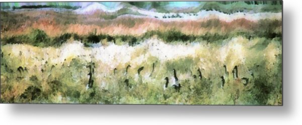 Geese In Grass Metal Print