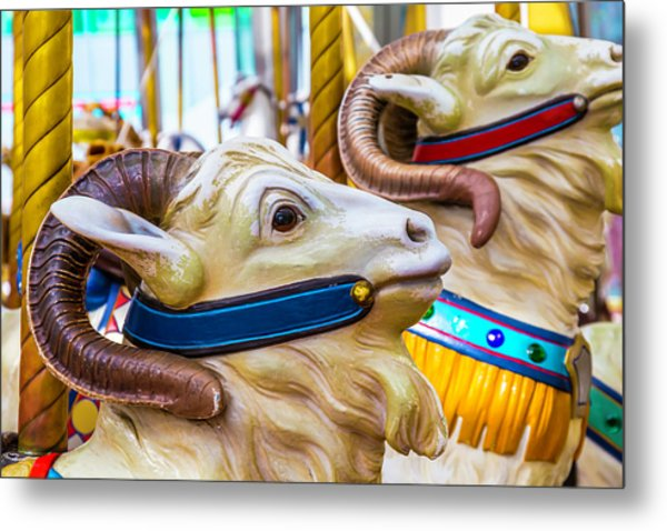 Goat Carrousel Ride Metal Print