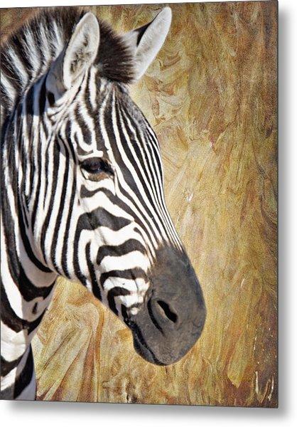 Grant's Zebra_a1 Metal Print